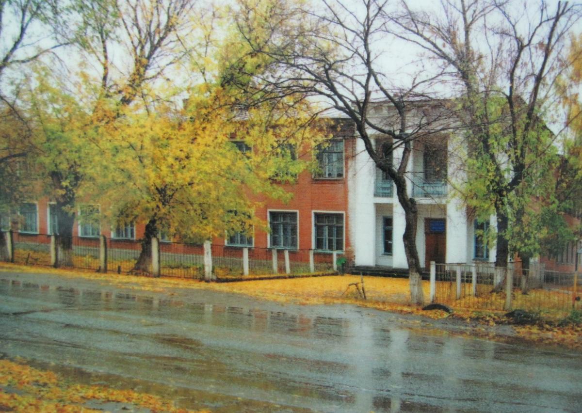 Школа 98 в Зубчаниновке.